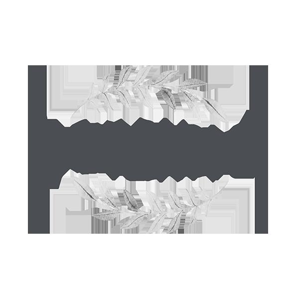 Sadie Paisley Photography image