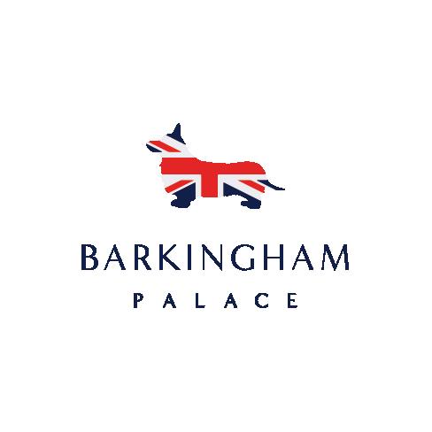 Barkingham Palace Pet Salon primary image