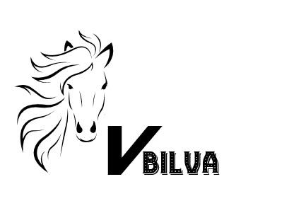 VBilva primary image