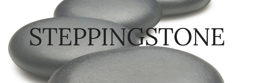 Steppingstone CB primary image