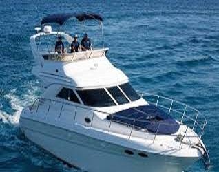 Boat Charter Rivera Maya image