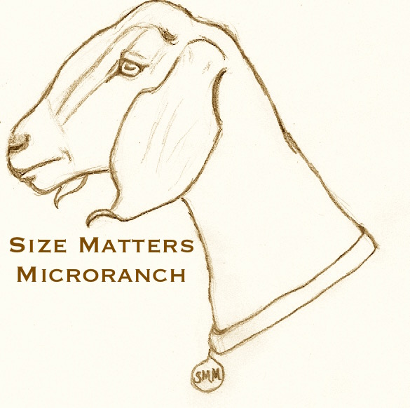 Size Matters Micro Ranch image