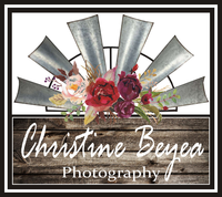 Christine Beyea Photography  image