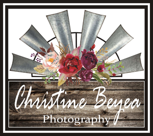Christine Beyea Photography  primary image