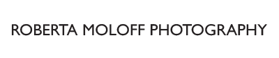 Roberta Moloff Photography primary image