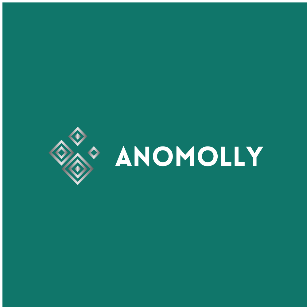 Anomolly Consulting, LLC image