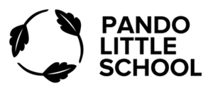 Pando Little School primary image