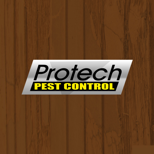 Protech Pest Control primary image
