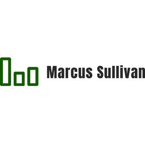 Marcus Sullivan primary image