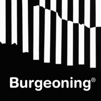 Burgeoning Architects image