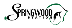 Springwood Station primary image