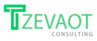 Tzevaot Consulting Inc image