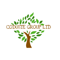 CODUSTE GROUP LIMITED primary image