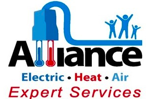 Alliance Services image