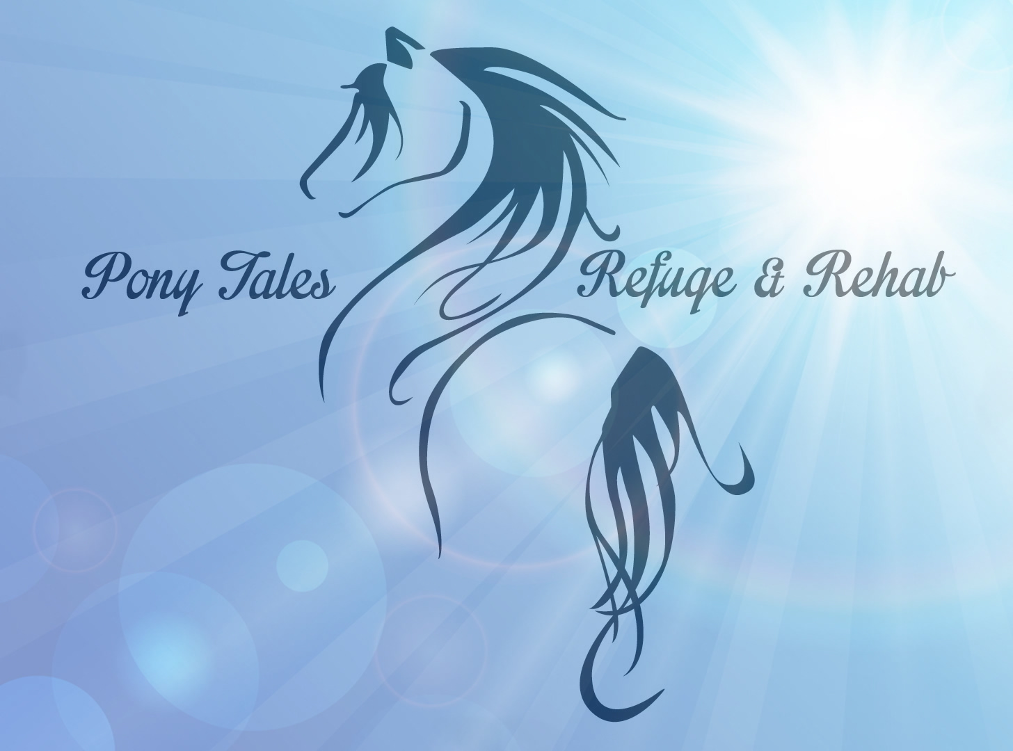 Pony Tales Refuge & Rehab, Inc. primary image