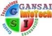 GanSai Infotech image