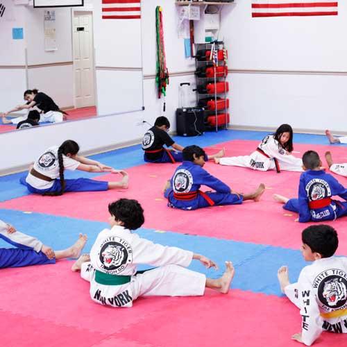 White Tiger Taekwondo image