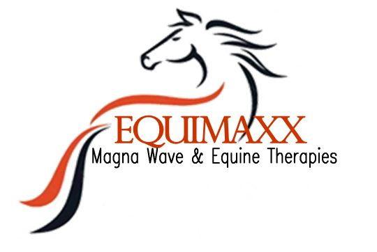 EquiMaxx primary image