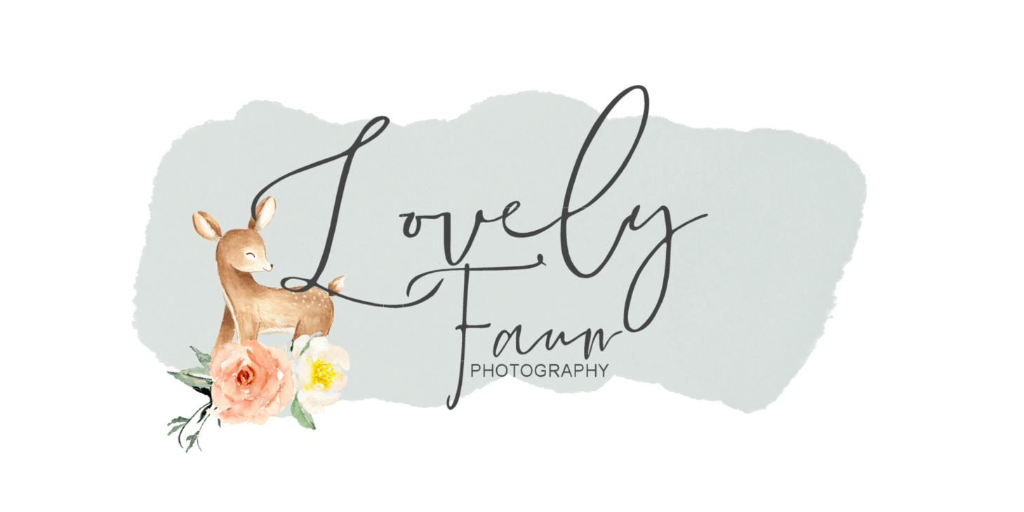 Lovely Faun Photography image