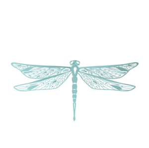 Dragonfly Digital primary image