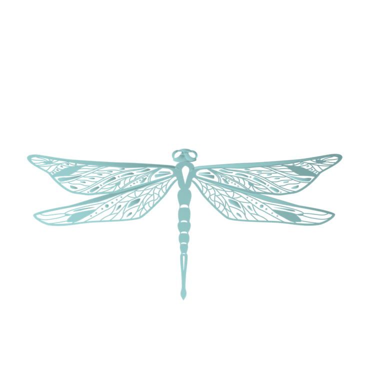 Dragonfly Digital image