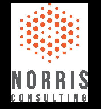 Norris Consulting, LLC primary image