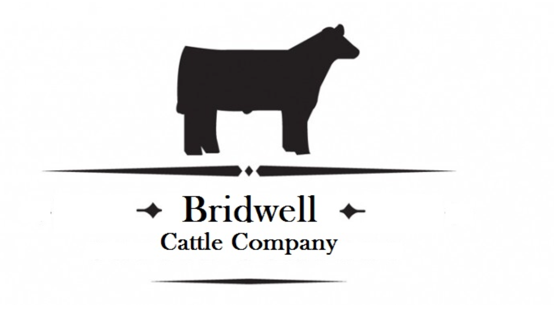 Bridwell Cattle primary image
