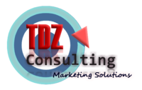 TDZ Consulting Group image