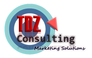 TDZ Consulting Group primary image