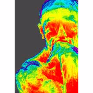 Heat Seeker Thermal Imaging primary image
