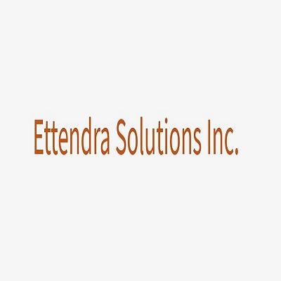 Ettendra Solutions Inc image