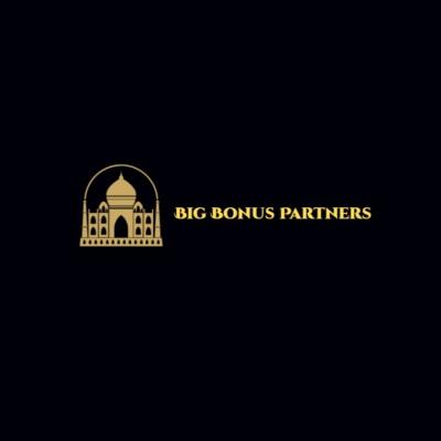 Big Bonus Partners image