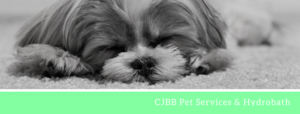 CJBB Pet services & Hydrobath primary image