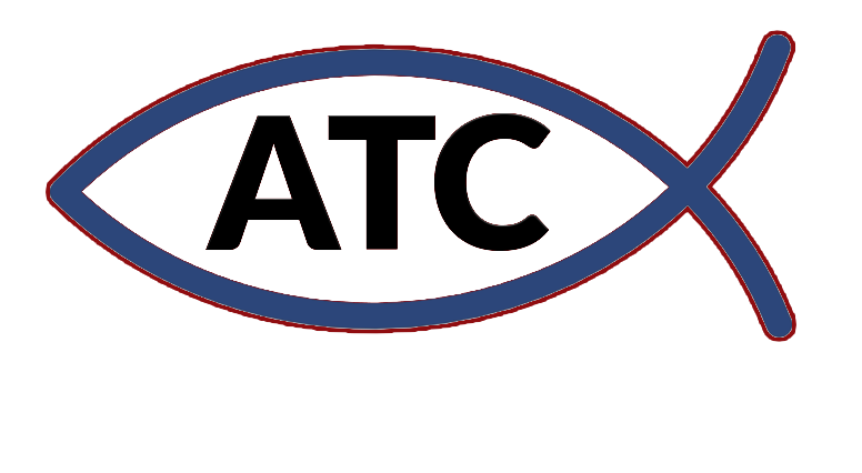 Affordable Trees and Construction primary image