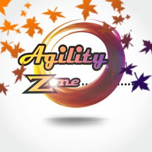 Agility Zone primary image