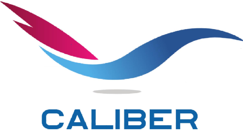 Caliber USA LLC image