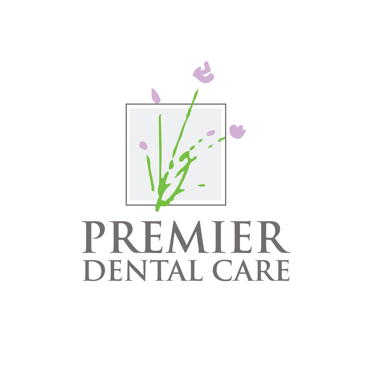 Premier Dental Care image