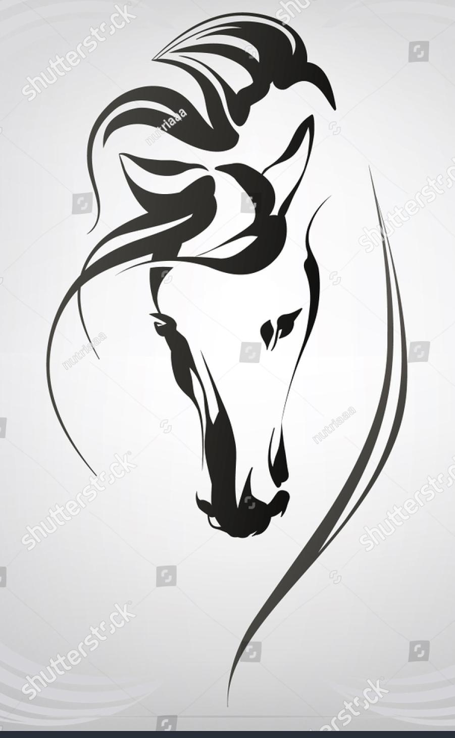 Mar~Li Equestrian image