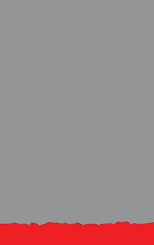 Fingerprint primary image