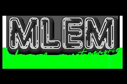 MLEM Ltd image
