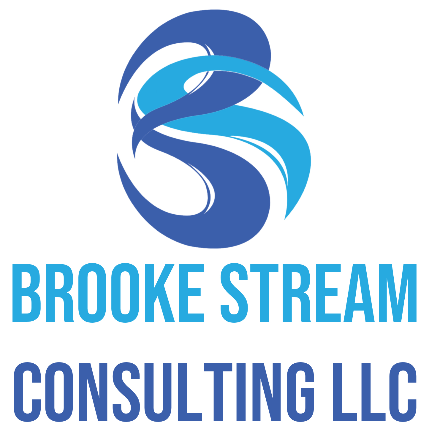 Brooke Stream Consulting LLC image