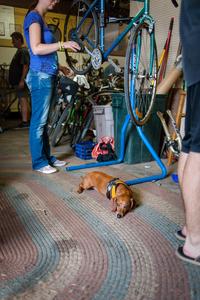 Madison Freewheel Bicycle Co. image