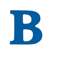 BlueLine Appraisals image