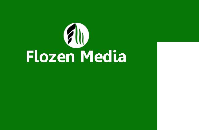 Flozen Media image