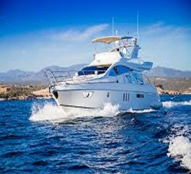 Yacht Rental Cabo San Lucas image
