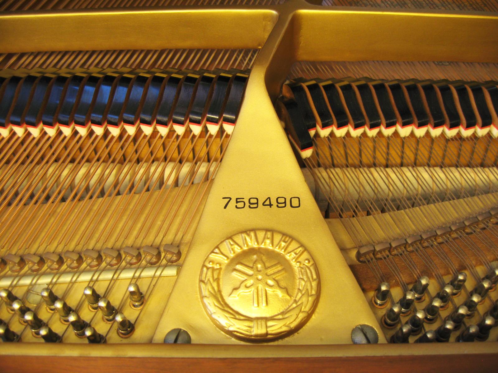 TK's Piano Warehouse image