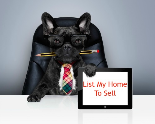 A dog ready to sell my house in Las Vegas, NV