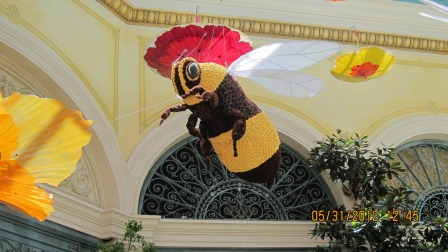 Bee in botanical garden