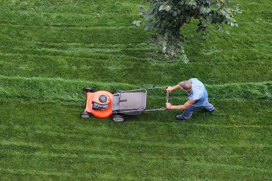 Bigstock man cuts the lawn lawn mowing 315348466