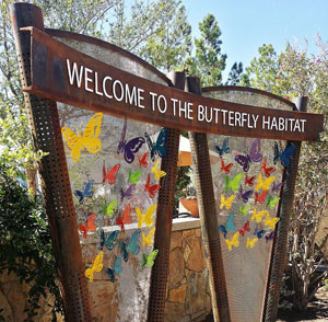 Butterfly Habitat at The Springs Preserve
